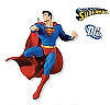 2010 Last Son of Krypton Hallmark Christmas Ornament