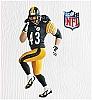 2010 Football Legends, Troy Polamalu