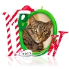 2015 Cat's Meow Photo Holder Hallmark Christmas Ornament
