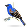 2017 KOC EVENT - Beauty of Birds Blue Grosbeak - Avail AUG