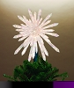 2016 Crystal Snowflake Tree Topper - 50 lights