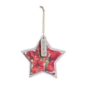 Miracle Star Ornament - Marjolein Bastin - Nature's Journey