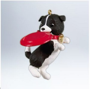 2012 Puppy Love #22 - Border Collie