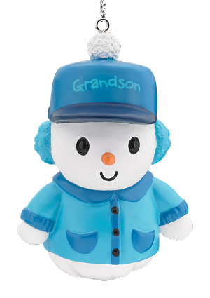 2017 grandson carlton ornament from american greetings at hooked 2017 grandson am greeting ornament m4hsunfo