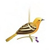 2011 Beauty of Birds Lady Oriole