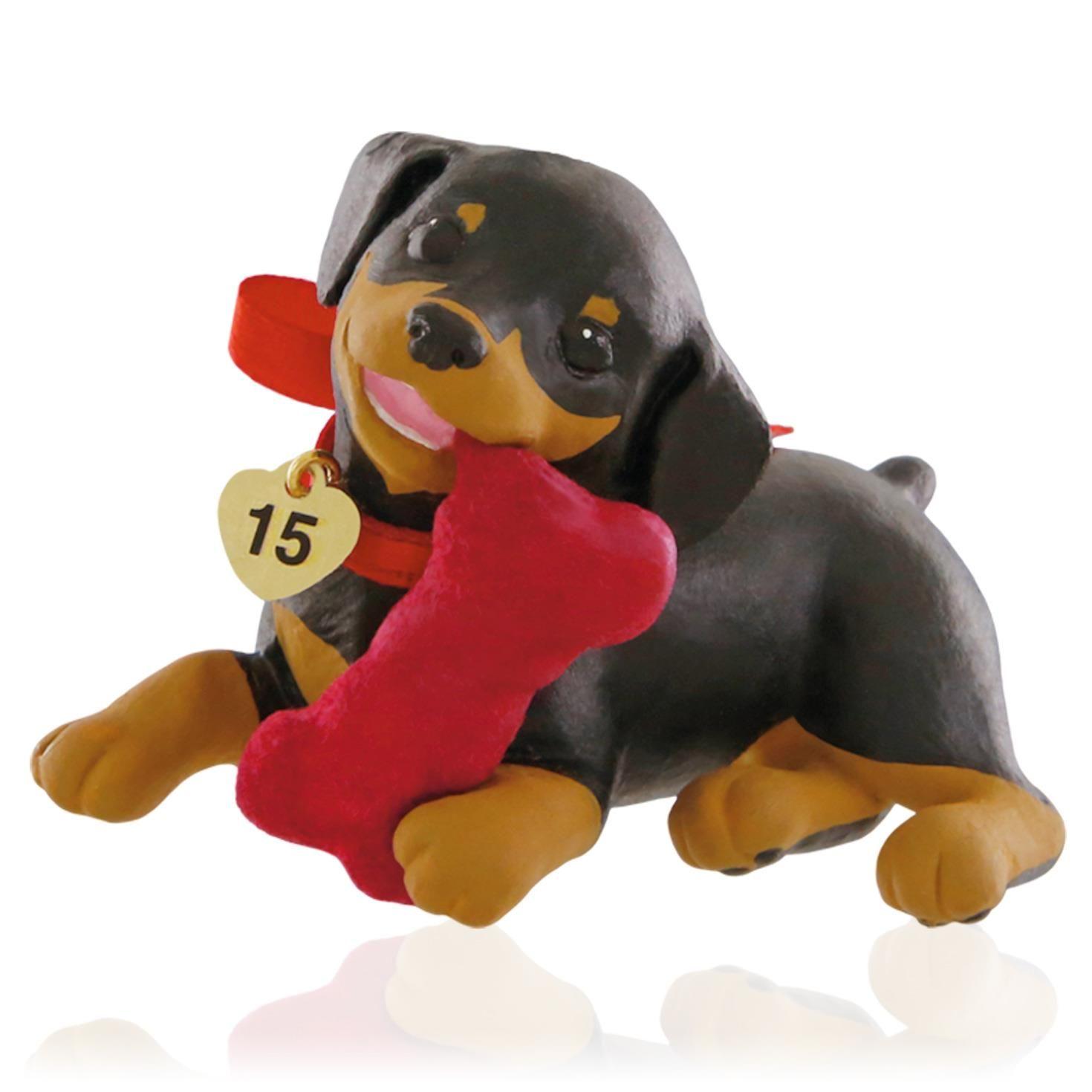 2015 Puppy Love Hallmark Keepsake Ornament Hooked On
