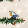 Baby Bluebird - Old World Christmas Blown Glass