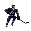 2019 NHL Winnipeg Jets Hockey