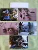 2020 Hallmark Club Exclusive Story & Photography - set of 5 cards