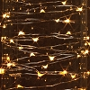 Fairy Lights - 9 foot Battery Operated Multi-Function LED Light String - Clear