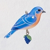 2019 Beauty of Birds MINIATURE - Eastern Bluebird