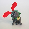 2011 Puppy Love #21, COLORWAY - RARE ONLY 64 PRODUCED - SDB