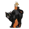 Scaredy Cat - Old World Christmas Blown Glass