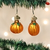 Pumpkins set of 2 - Old World Christmas Blown Glass